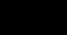 Marque Noire Logo